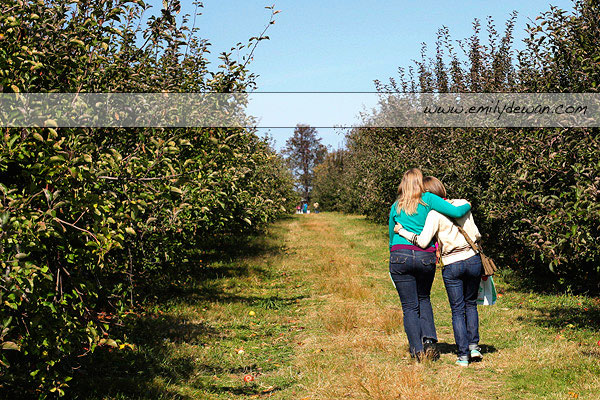 apple picking stuart's fruit farm granite rock ny