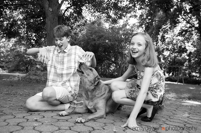 family dog pet portrait nyc new york
