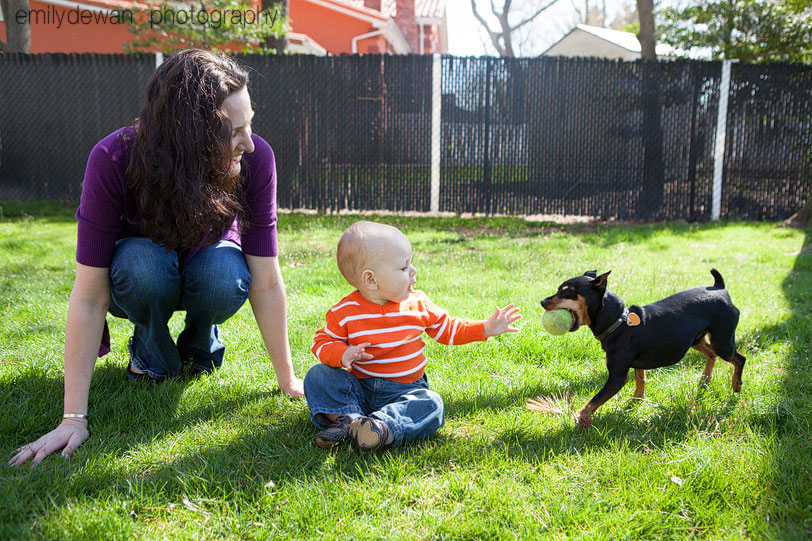 long island family portrait kid dog min pin nyc