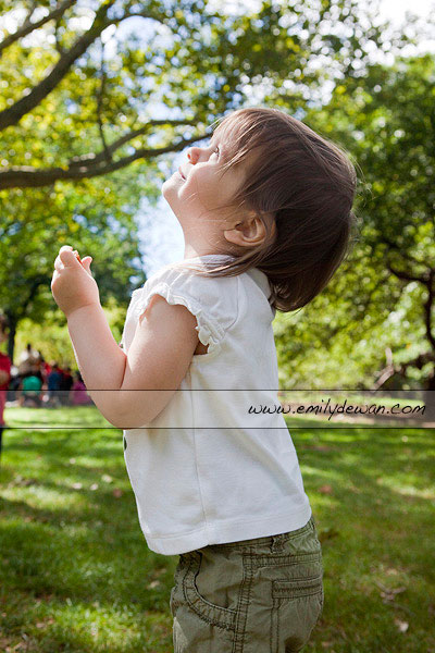central park toddler portrait