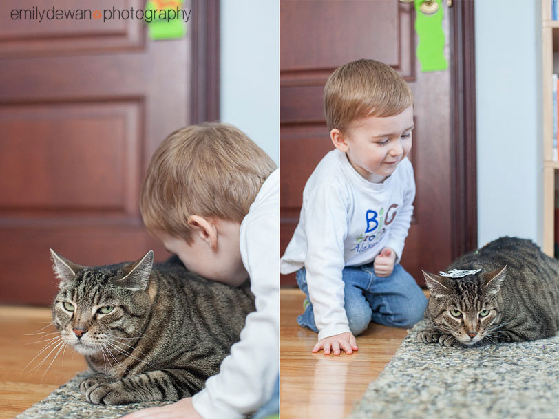 nyc kid child pet cat portrait new york