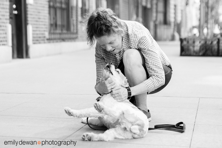new york dog pet photography